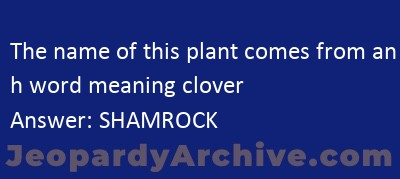 The Name Of This Plant Comes From An Irish Word Meaning Clover